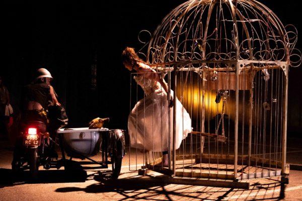 360° - En cage © Benjamin Lengagne